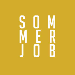 Read more about the article Dein Sommerjob