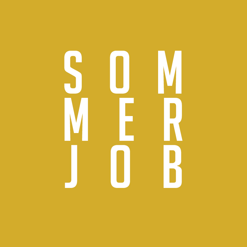 You are currently viewing Dein Sommerjob
